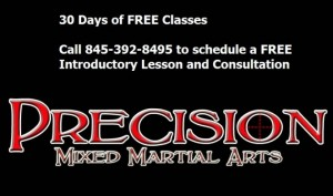 Precision MMA a Tampa Gracie school